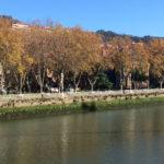 Yesgathering Mondragon Bilbao 2016 196